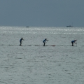 killerfish german sup challenge 2014 fehmarn 95