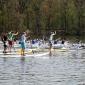 race around scharfenberg - german sup challenge