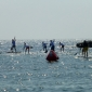 superflavor-german-sup-challenge-fehmarn-2013-143