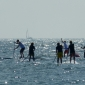 superflavor-german-sup-challenge-fehmarn-2013-144